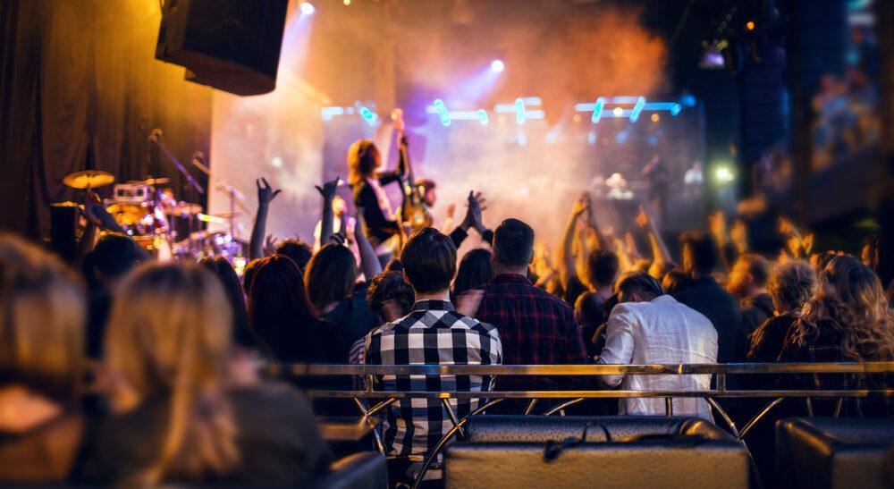 Festival VIP divide